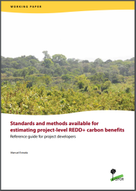 standards and methods available for project level REDD+